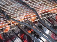 Gambas Grillées au BBQ