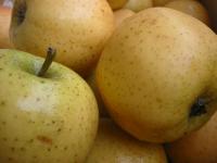 Papillotes de Pommes au Miel de Babette